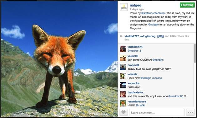 National Geographic Instagram
